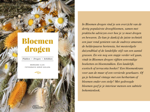 In Bloemen drogen vind je een overzicht van de dertig populairste droogbloemen, samen met praktische adviezen over hoe je ze moet drogen en bewaren. Zo kun je dankzij de juiste techniek een jaar rond genieten van d